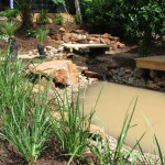 Natural Water Feature 5