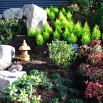 QLD Gold Medal Garden 2