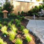 QLD Gold Medal Garden 8